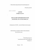 Орёл карлик в Европейской России скачать бесплатно  Орёл карлик в Европейской России тема диссертации по биологии скачайте бесплатно