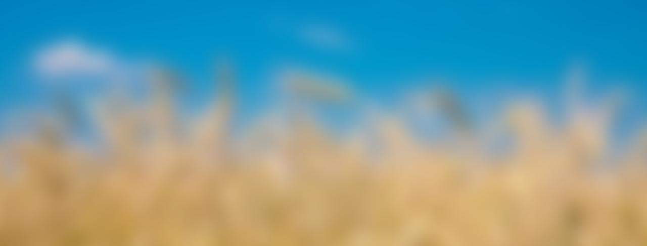 научная библиотека авторефератов и диссертаций по  научная библиотека авторефератов и диссертаций по геологии географии наукам о земле биологии и сельскому хозяйству